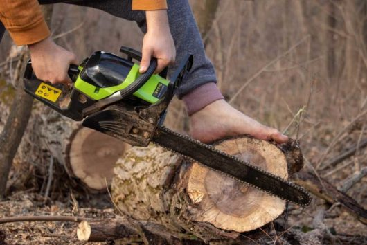 The Top Ryobi 14 Inch Chainsaw Reviews